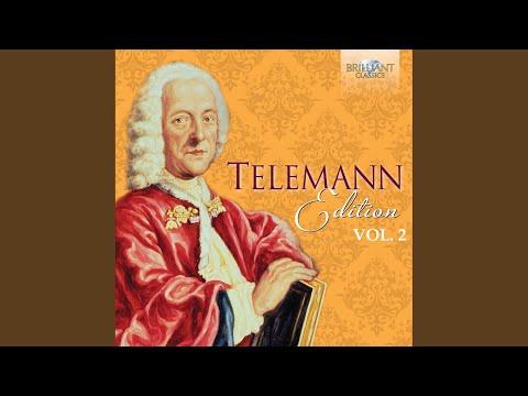 Concerto for Violin, Cello, Trumpet and Strings in D Major, TWV 53:D5: I. Vivace