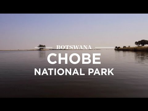 Chobe National Park, Botswana | Safari365