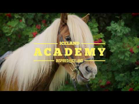 A Beginners Guide to Sagas and Horses | Iceland Academy