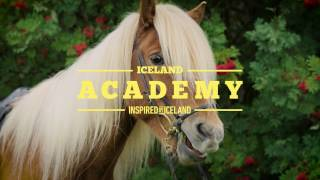 A Beginners Guide to Sagas and Horses | Iceland Academy thumbnail
