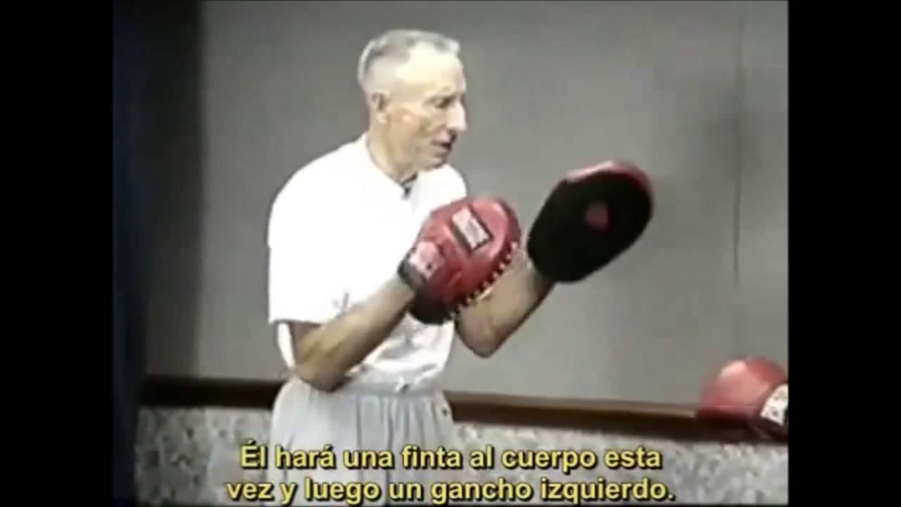 don familton superior boxing