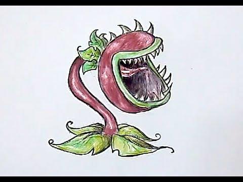 How I Draw Chomper Plants Vs ZOmbies YouTube