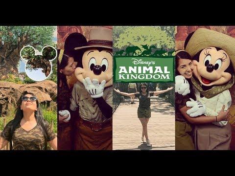 ANIMAL KINGDOM ORLANDO Mi Parque Favorito de DISNEY WORLD 05-08