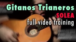 Gitanos Trianeros (Solea) by Paco de Lucia - Full Video Training - Annotations