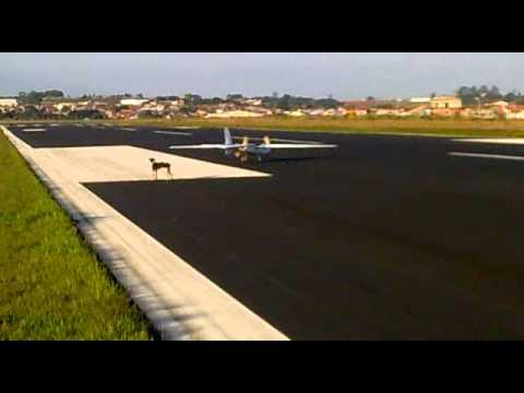 Primeiro voo sarvant thumbnail