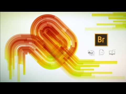 برنامج Adobe Bridge CC 2017 MultiLangual