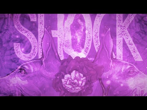 BARONESS – Shock Me [OFFICIAL]