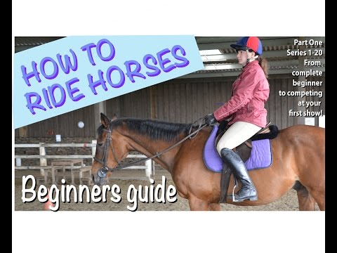 How to ride horses (Part 1 in the series) Introduction Getting started