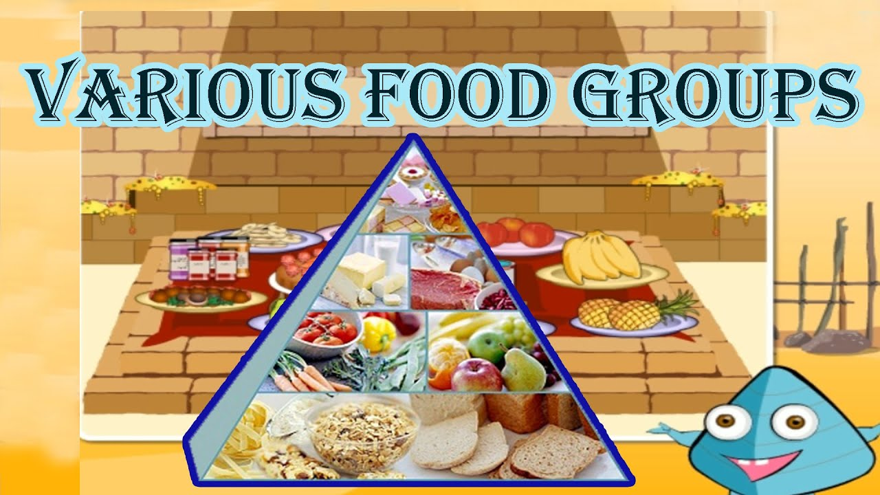 food pyramid the 5 different food groups learn the healthy