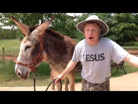 Training Donkey Gracie and the spirit of Herodias