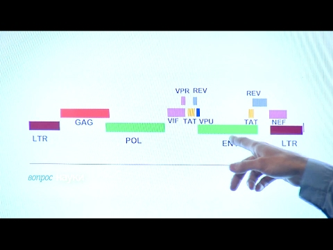 Чем опасен ВИЧ? | Вопрос науки. В студии Георгий Базыкин - Cмотреть видео онлайн с youtube, скачать бесплатно с ютуба
