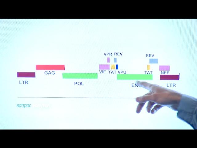 Чем опасен ВИЧ?   Вопрос науки. В студии Георгий Базыкин