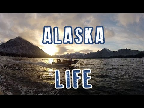 Southeast Alaska | Deer Hunting | First Person View