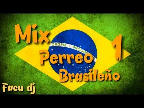 🇧🇷Mix Perreo Brasileño 🇧🇷[⚡Enganchado Brasilero⚡]/ Facu DJ