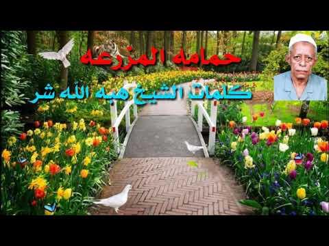 قصيدة حمامه المزرعة من كلمات الشيخ هبه الله شريم اداء الشيخ عبدالرحمن بكيره