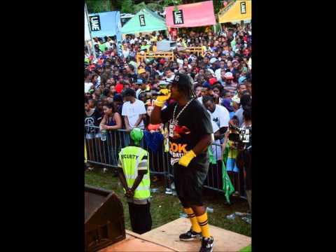 asa banton live  creole in the park  2014 pt1