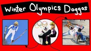 Doggos do the Winter Olympics