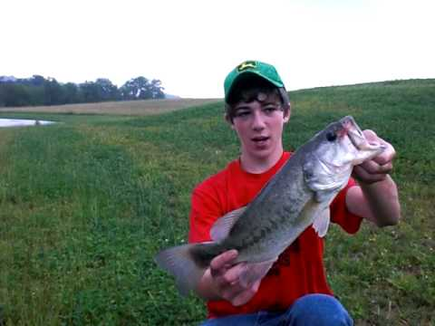 Bass Fishing With Shallow Cranks