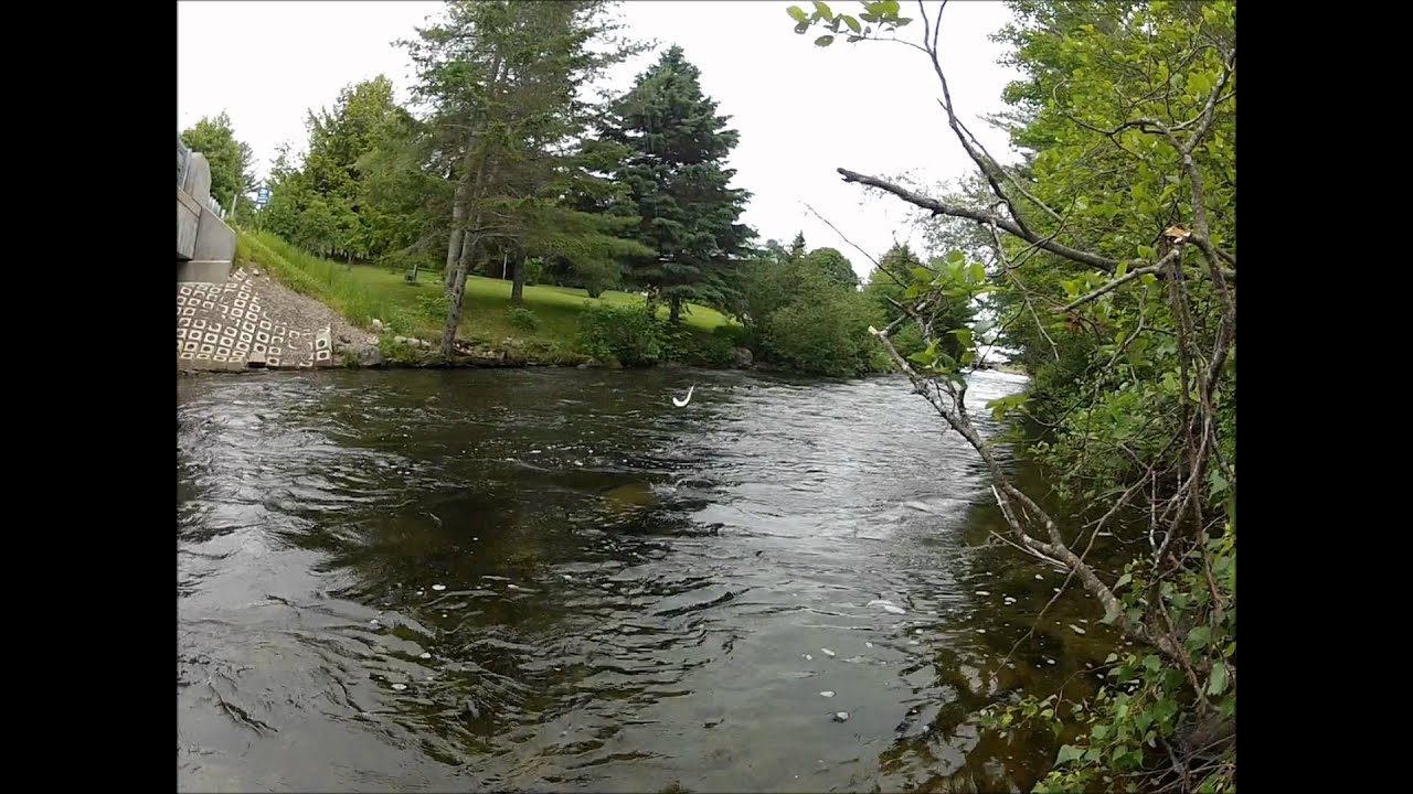 Grand Lake Stream Maine Map.Grand Lake Stream Maine Map Www Topsimages Com