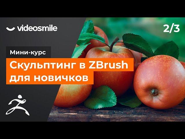 Мини-курс «Скульптинг в ZBrush для новичков». Урок 2 - Проработка формы и детализация