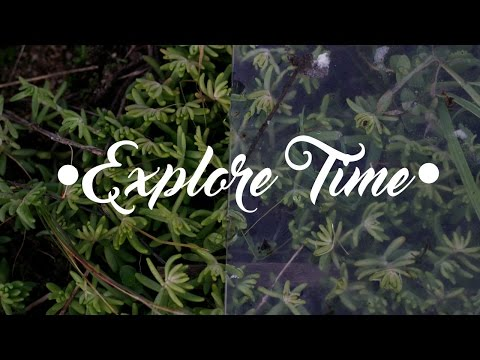 INTRODUCING - EXPLORE TIME #1 | Dud in action
