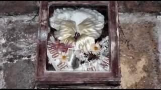 2011-04 Ostern auf Mallorca - Teil 5 - Stadtfriedhof Palma