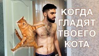 🐈 Когда гладят твоего кота 🔪