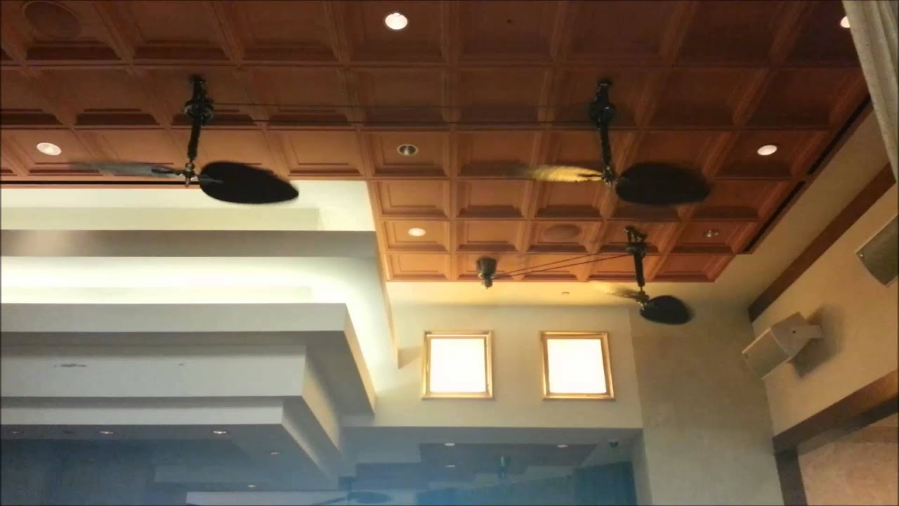 Fanimation Brewmaster Ceiling Fans