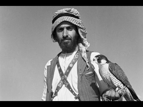 Sheikh Zayed bin Sultan Al Nahyan, Falcons, and Abbasid Hunting Poetry