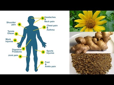 6 Herbal Remedies for Natural Pain Relief