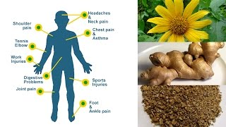 Herbal Reme Natural Pain Relief