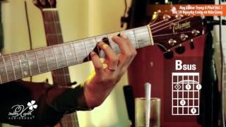 Học Guitar Trong 8 Phút Vol.1- Bài 10: Nguyên Cung và Nửa Cung P2