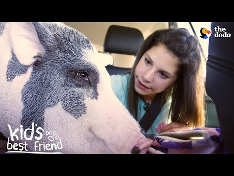 Girl's BFFs Are Two Pigs — Who Act Just Like Dogs | The Dodo Kid's Best Friend