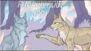 Коты-Воители Клип: Кто-то уходит, а кто предаёт.