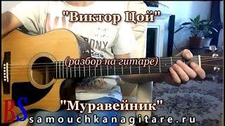 Виктор Цой - Муравейник (кавер) Аккорды, Разбор песни на гитаре