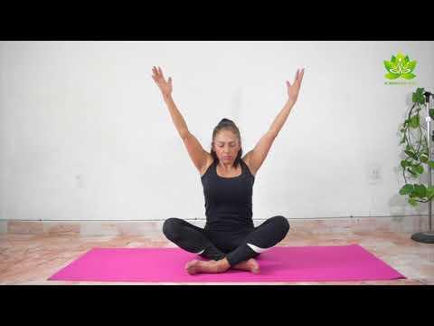 Yoga para principiantes clase 3