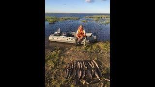 рыбалка на Ямале супер озеро.Щука на спиннинг, на копию магалона с али экспресс