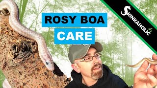 Video Ep. 49 1/2 - Rosy Boa Care download MP3, 3GP, MP4, WEBM, AVI, FLV September 2018