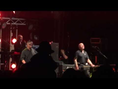 "The Stranglers - ""Golden Brown"" - Galtres Festival, 25th August 2013"