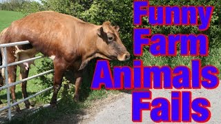 Funny Farm Animals Fails  | Animal Fails Compilation