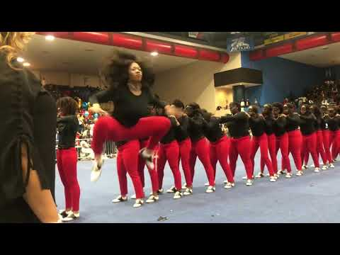 Thee Return of Delta Pi Chapter of Delta Sigma Theta