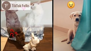 Cutest and Funniest animals of tiktok sept 2019 | Funny viral adorable animals | part 2