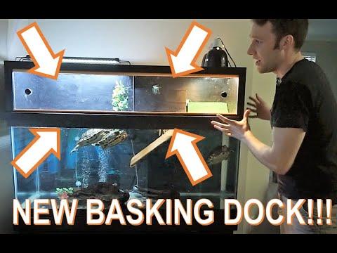 Update! 75 Gallon Turtle Tank With Above Tank Basking Platform