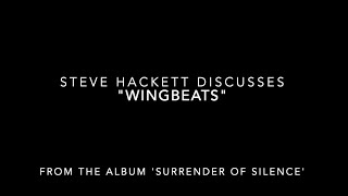 """Steve Hackett Track Chat – """"Wingbeats"""" from 'Surrender of Silence'"""