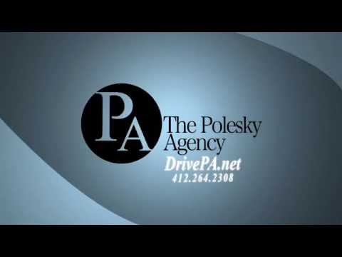 Polesky Agency commercial, featuring the Insurance Dogger