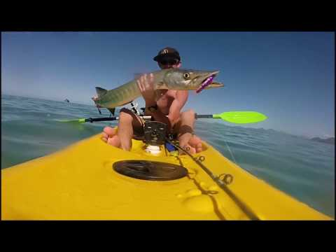 fishing cairns and fnq!! kayak, land based, trinity inlet and reef