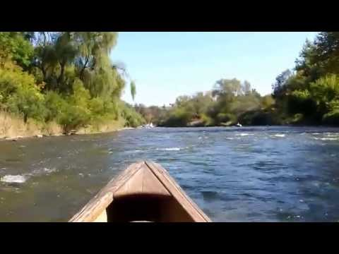 Attack of the Salmon : Canoeing the Credit River