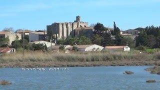 Vic la Gardiole ville et village d'hérault