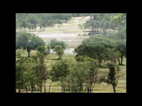 Loma Linda Ranch - New