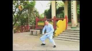 袁康就博士《養生修談》之太極築基功九式 2004 Taichi Zhuji Nine Form by Dr. HC Yuen